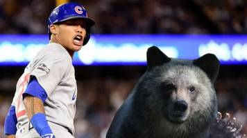 the world series may already be over, according to stats (and animals)