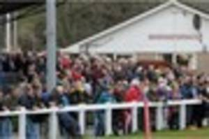 'west ham effect' hits bideford at home in tribute south west one