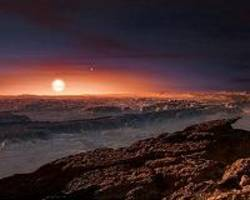 Proxima b could be an ocean planet