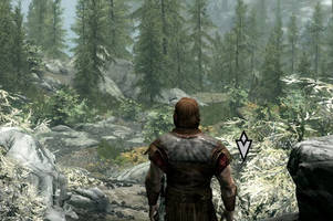 'skyrim: special edition' frame rate performance suffers on ps4 pro consoles