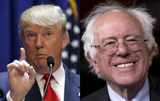 Would Bernie Sanders Have Beaten Trump?
