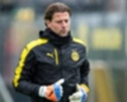tuchel backs weidenfeller in burki absence