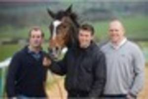 top racehorse monbeg dude mike tindall bought accidentally for...