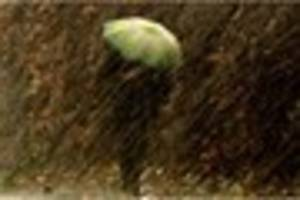 kent weather warning for  damage to trees and 'large waves'