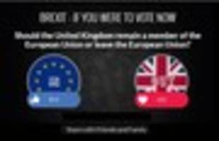 we asked you to vote on brexit again and you shocked us