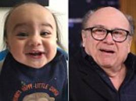 'what are you feeding this kid? rum ham?' six-month-old baby who bears more than passing resemblance to danny devito becomes online hit after his mother compared him to the actor