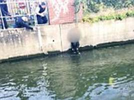 Wanted woman leaps into Hogsmill river in Kingston after trying to escape police