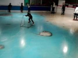 Japan ice skating rink slammed for freezing 5,000 fish
