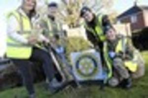 Big thanks to Brigg ATC  as 8,724 crocuses are  planted in one...