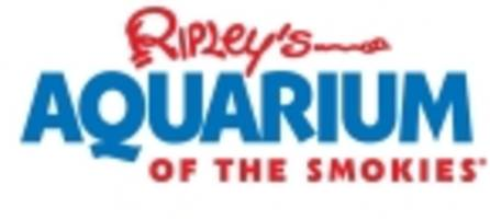 ripley's aquarium of the smokies reports the animals safe and under care