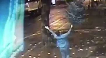 Watch: 'Filthy bugger' takes Northern Ireland nightclub's Christmas tree