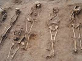 children of the black death are unearthed in a lincolnshire burial pit: huge numbers of bodies suggest area was 'overwhelmed' by plague victims