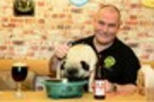 VIDEO: Hair of the dog? Newcastle pub now stocks canine-friendly...