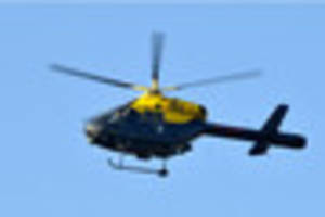 Man chased by police helicopter and dogs after BMW rolls over in...