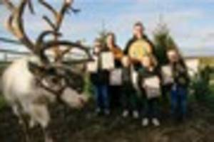 Exeter family supply Christmas tree to 10 Downing Street