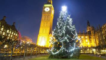 the operation to erect parliament's christmas tree