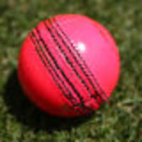england agree to pink ball test in ashes