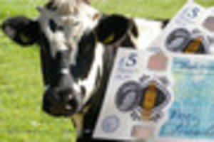 Bank of England working to remove beef products from its new...