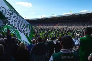 castlemilk man attacked rival football fan after invading pitch at scottish cup final