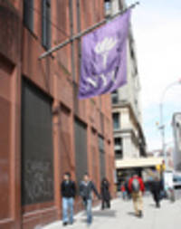 nyu promises to protect undocumented immigrant students from trump regime