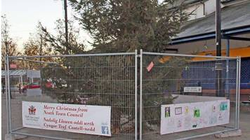 When Christmas trees go wrong - the public has its say