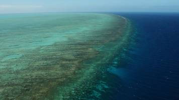 Australia Is Going To Spend A Lot Of Money On The Great Barrier Reef