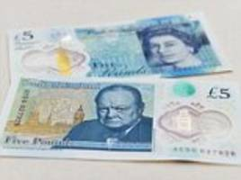 Vegetarian cafe owner refuses to accept the new plastic fivers