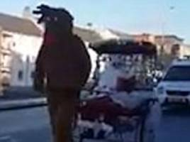 yule not getaway! hilarious footage shows low speed chase as police van tries to stop santa's sleigh - but rudolph refuses to comply