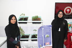 aurak students successfully implement vertical farming