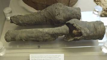 experts have finally identified these ancient mummified knees
