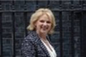 Man bailed over 'Jo Cox Twitter threat' to Notts MP Anna Soubry