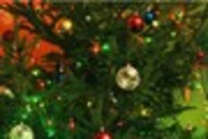 Let us know your thoughts in our Christmas tree poll - star or...