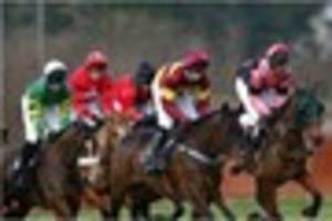 Point-to-Point news: ​Hursley Hambledon 2016 Preview