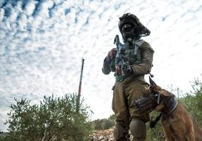 watch: idf forces ambush would-be fire bomb assailants in west bank