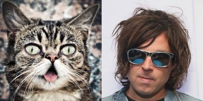 watch ryan adams discuss new album, sing silly song for lil bub