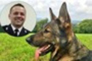 Police German Shepherd Axel first dog to win bravery award for...