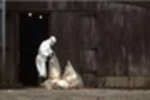 Warning: New rules to stop bird flu breaking out in Stoke-on-Tren...