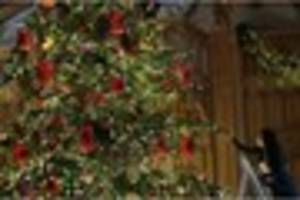 Christmas 2016: When should Christmas trees be put up and taken...