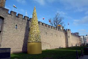 Cardiff's 'Christmas-tree-shaped object' cost £30,000. We found a real one for £1,000.