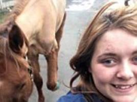 Rider who took Facebook selfie with skeletal horse she rode is banned from keeping them