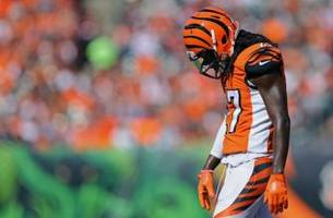 bengals vs browns: frustrating tale of two cities