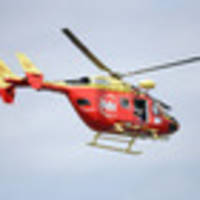 Boy may have serious head injury after mini motorbike crashes into tree in rural Waikato