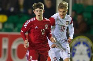 wales fans given chance to return to france next summer... this time to roar on young guns at toulon tournament