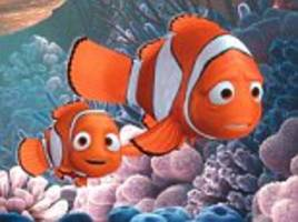 how nemo would really get home: researchers find baby reef fish have an internal compass