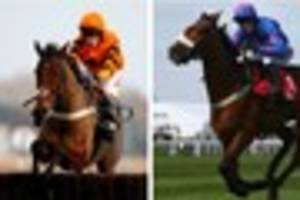 thistlecrack v cue card: ruby walsh backs reigning champ in king...