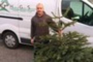 christmas tree recycling service raises £500 for torbay...