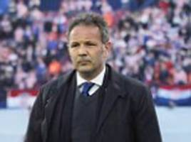 torino boss sinisa mihajlovic has 'sleepless nights' after rejecting big money job in china