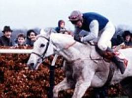 final hurdle for kempton: time running out for the course where legends desert orchid and kauto star raced into history