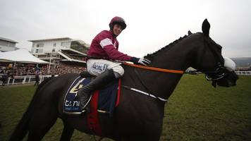 Don Cossack: Cheltenham Gold Cup champion retired with leg injury