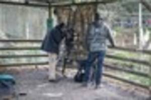 Paignton Zoo to feature on The One Show tonight